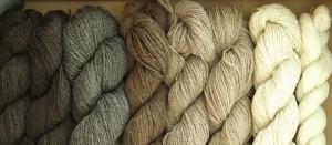 Shetland Wool Week, alla scoperta delle isole Shetland